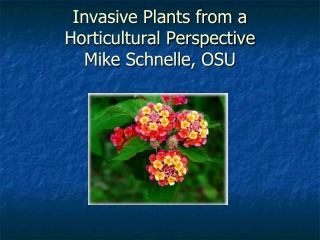 Invasive Plants from a Horticultural Perspective Mike Schnelle, OSU