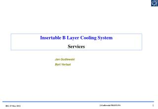 Insertable  B Layer Cooling System Services