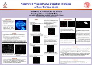 Automated Principal Curve Detection in Images  of Solar Coronal Loops
