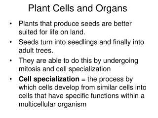 Plant Cells and Organs