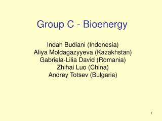 Group C - Bioenergy