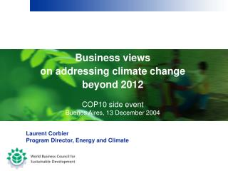 Business views  on addressing climate change beyond 2012 COP10 side event