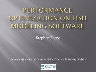 Performance optimization on fish modeling software