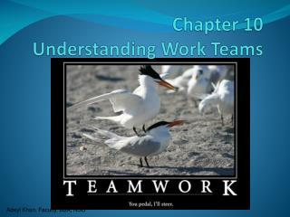 Chapter 10 Understanding Work Teams