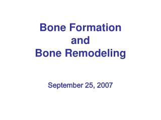 Bone Formation and  Bone Remodeling