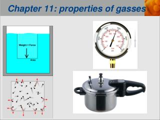 Chapter 11: properties of gasses