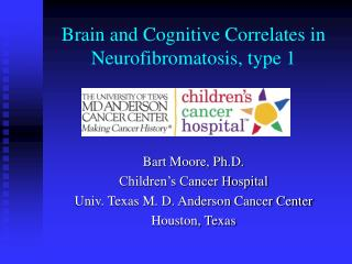 Brain and Cognitive Correlates in Neurofibromatosis, type 1