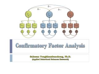 Confirmatory Factor Analysis
