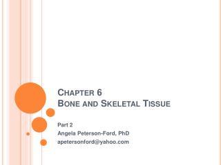 Chapter 6 Bone and Skeletal Tissue