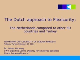 The Dutch approach to Flexicurity:  The Netherlands compared to other EU countries and Turkey