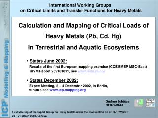 First Meeting of the Expert Group on Heavy Metals under the  Convention on LRTAP / WGSR,