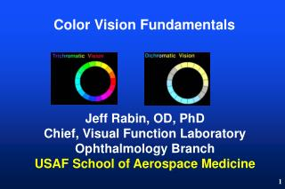 Color Vision Fundamentals