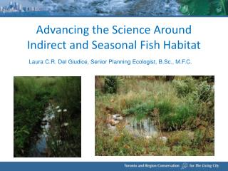 Advancing the Science Around Indirect and Seasonal Fish Habitat