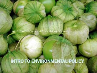 Intro to Environmental Policy