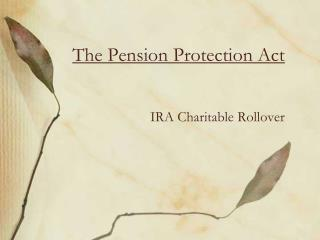 The Pension Protection Act