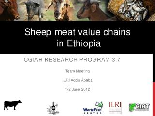 CGIAR Research Program 3.7