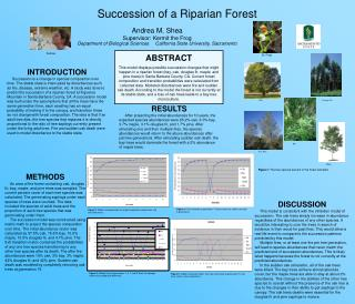Succession of a Riparian Forest
