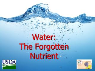 Water:  The Forgotten Nutrient