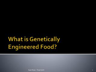 What is Genetically Engineered Food?