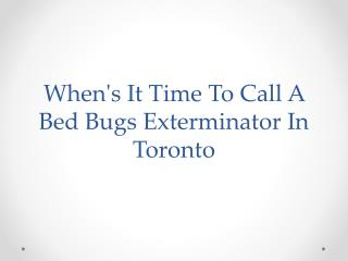 When's It Time To Call A Bed Bugs Exterminator In Toronto