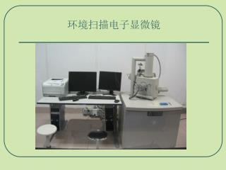 环境扫描电子显微镜