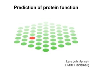Prediction of protein function