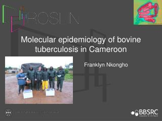 Molecular epidemiology of bovine tuberculosis in Cameroon