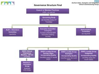 Governance Structure Final