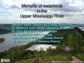 Mortality of waterbirds  in the  Upper Mississippi River