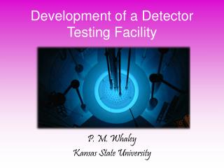 Development of a Detector Testing Facility