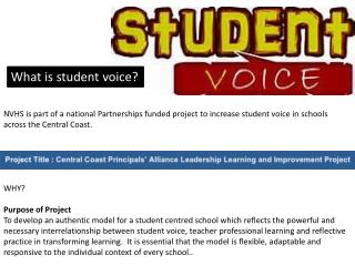 What is student voice?