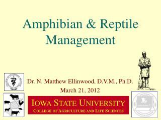 Amphibian & Reptile Management