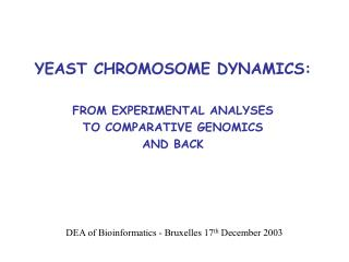 YEAST CHROMOSOME DYNAMICS: FROM EXPERIMENTAL ANALYSES TO COMPARATIVE GENOMICS AND BACK
