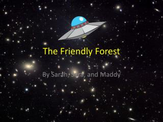 The Friendly Forest