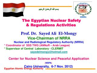 Prof. Dr.  Sayed Ali  El-Mongy Vice-Chairman of NRRA