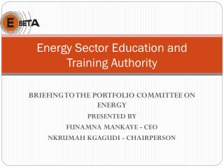 Energy Sector Education and Training Authority