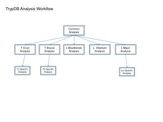 TrypDB Analysis Workflow