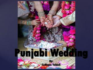 Punjabi Wedding By: CeNique Yeldell