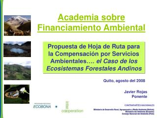 Academia sobre Financiamiento Ambiental