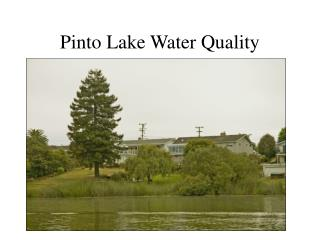Pinto Lake Water Quality