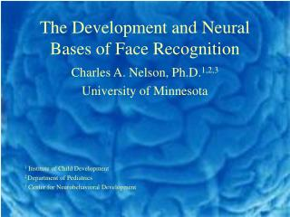 The Development and Neural Bases of Face Recognition