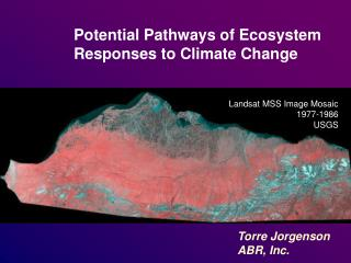 Potential Pathways of Ecosystem Responses to Climate Change