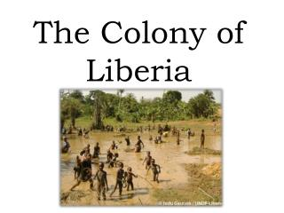 The  Colony of  Liberia