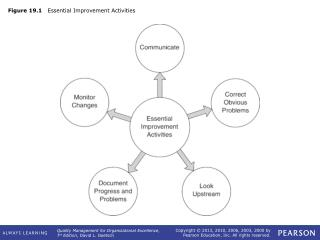 Figure 19.1    Essential Improvement Activities