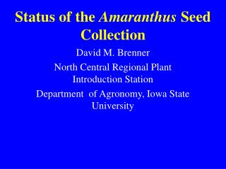 Status of the  Amaranthus  Seed Collection