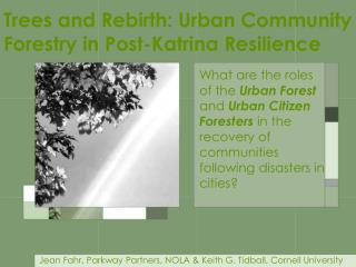 Trees and Rebirth: Urban Community Forestry in Post-Katrina Resilience