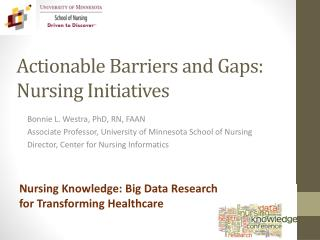 Actionable Barriers and Gaps: Nursing Initiatives
