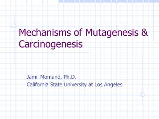 Mechanisms of Mutagenesis & Carcinogenesis
