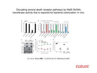 S Li  et al. Nature  000 , 1-5 (2013)  doi:10.1038/nature12436