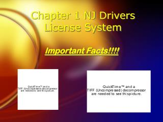 Chapter 1 NJ Drivers License System